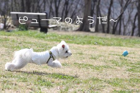 3_19_0713.jpg