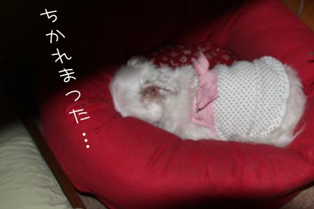 3_22_1659.jpg