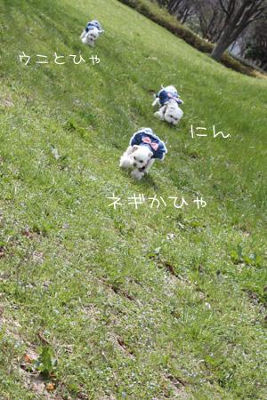 3_23_1854.jpg