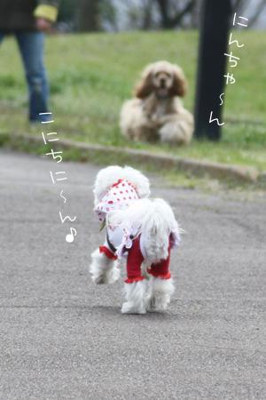 3_26_2618.jpg