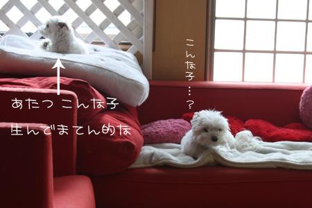 3_28_2883.jpg