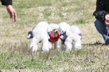 3_29_3213.jpg