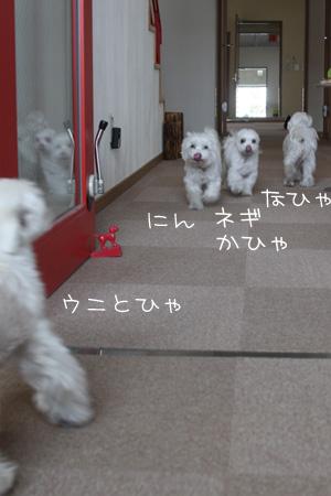 3_31_3623.jpg