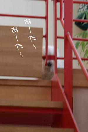 4_21_8373.jpg