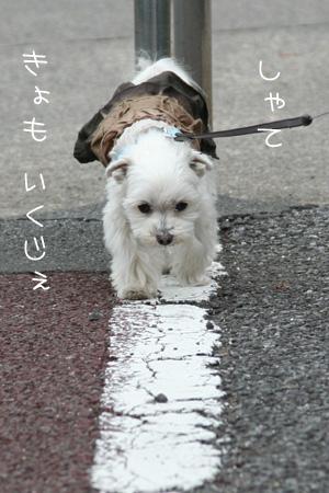 4_24_5219.jpg