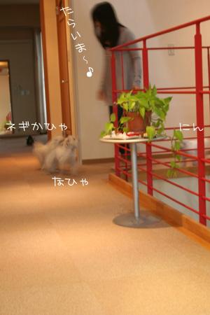 4_24_5574.jpg