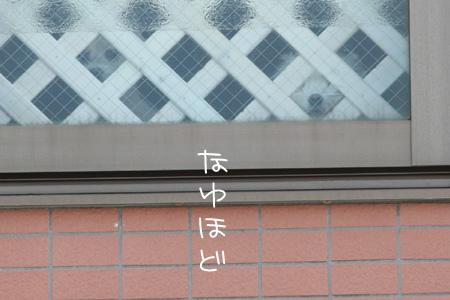 4_2_4158.jpg