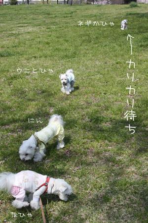 4_8_5661.jpg