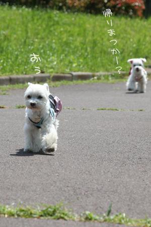 5_15_0222.jpg