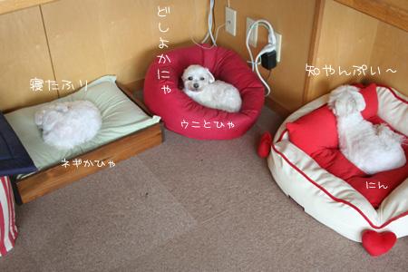 5_16_0286.jpg