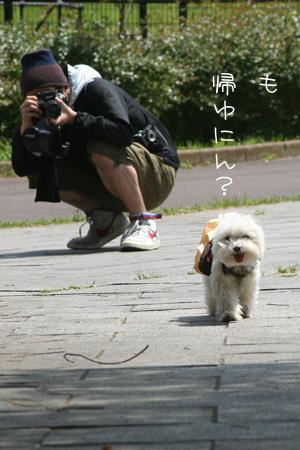 5_1_7039.jpg