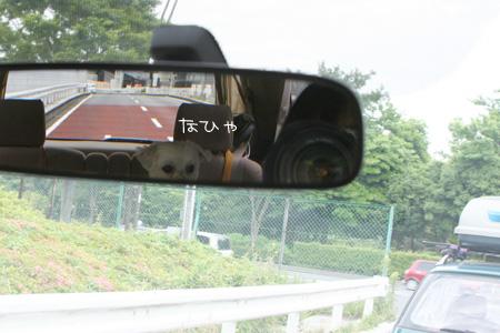 5_25_2337.jpg