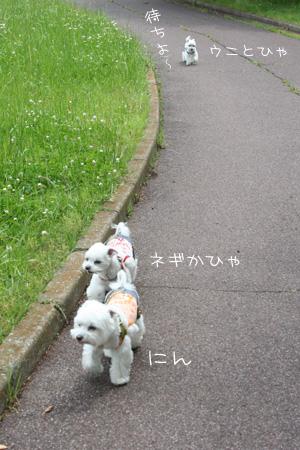 5_25_2454.jpg
