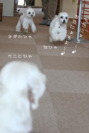 5_27_2691.jpg