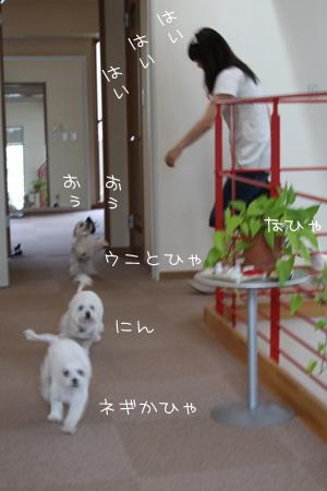 5_27_8469.jpg
