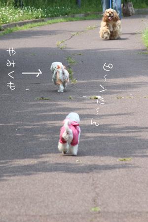 5_27_8580.jpg