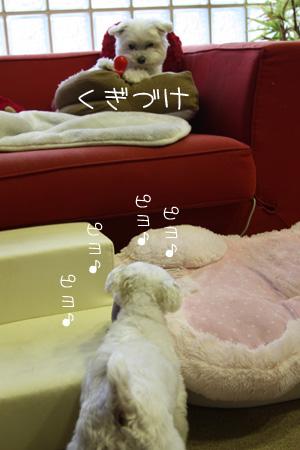5_30_9212.jpg