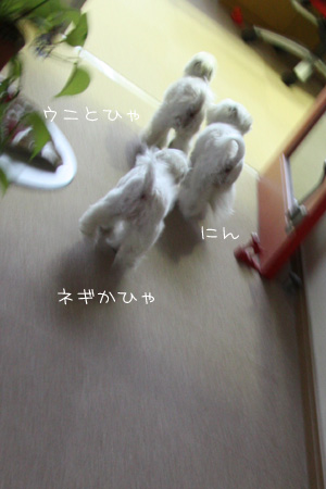 5_30_9378.jpg