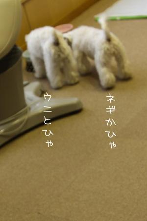 5_30_9387.jpg