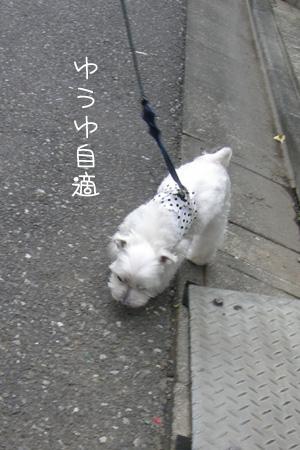 5_31_6903.jpg