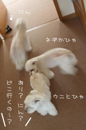 5_3_7660.jpg