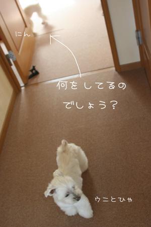 5_3_7661.jpg