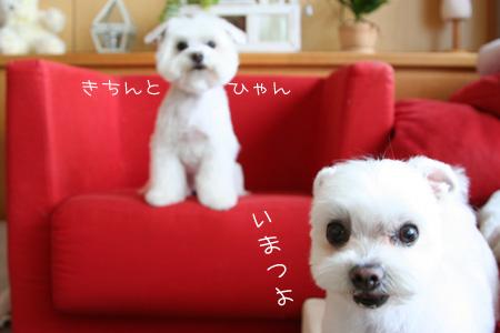 6_20_3474.jpg