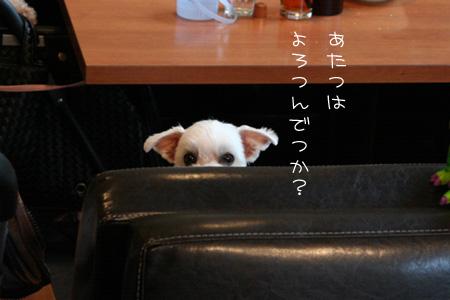 6_21_29.jpg