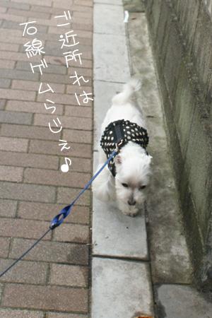 6_28_5645.jpg