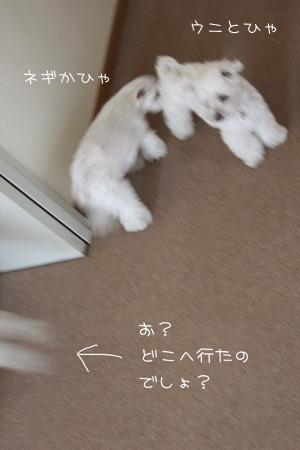 6_5_0423.jpg