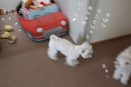 6_5_0456.jpg