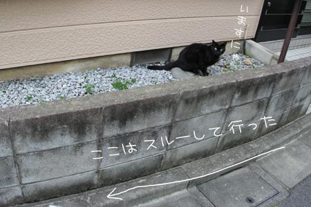 7_10_9800.jpg