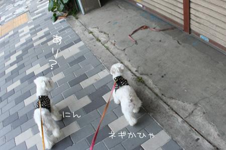 7_12_0029.jpg