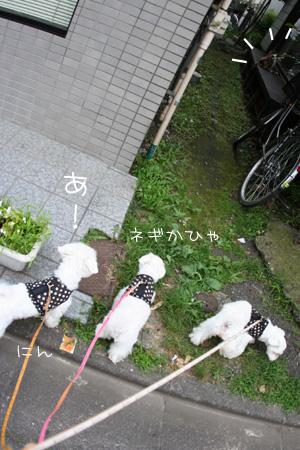 7_12_0048.jpg