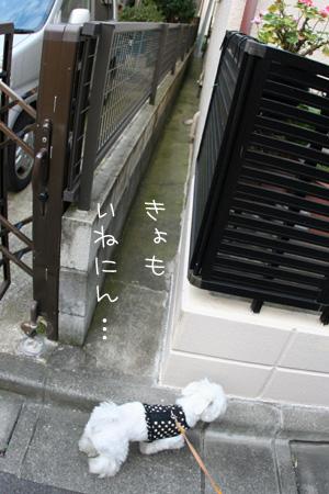 7_12_0063.jpg