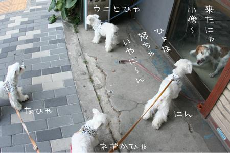 7_14_0006.jpg