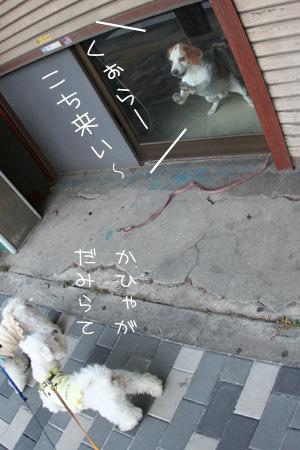 7_15_0131.jpg