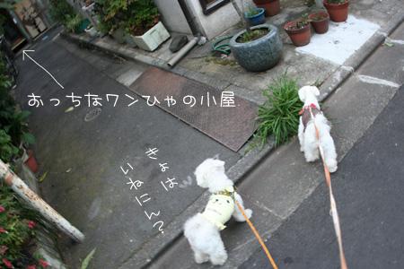 7_15_0149.jpg