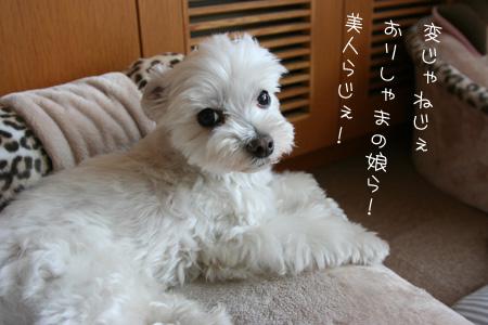7_18_0580.jpg