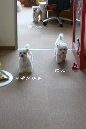 7_18_0587.jpg
