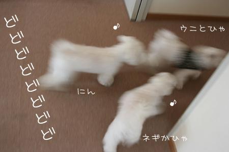 7_18_0607.jpg