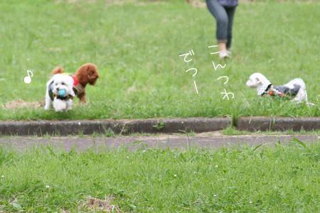 7_1_6209.jpg