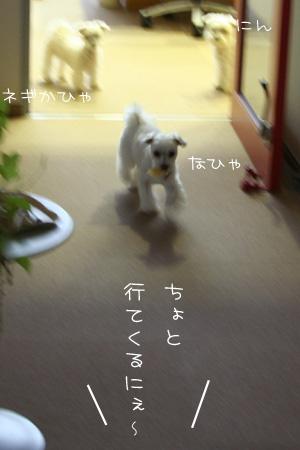 7_22_1363.jpg