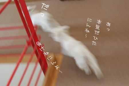 7_24_1635.jpg