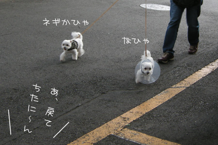 7_29_6943.jpg