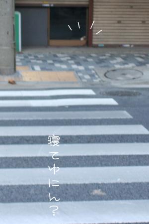 7_30_1869.jpg