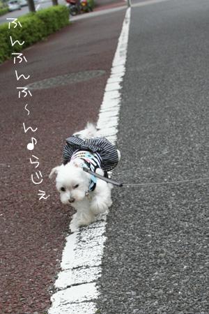 7_5_6987.jpg