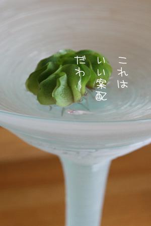 8_10_3190.jpg