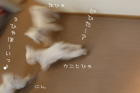 8_10_3212.jpg