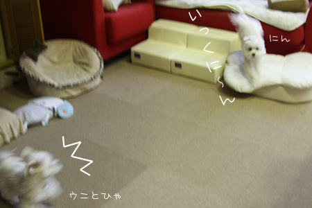 8_10_3216.jpg